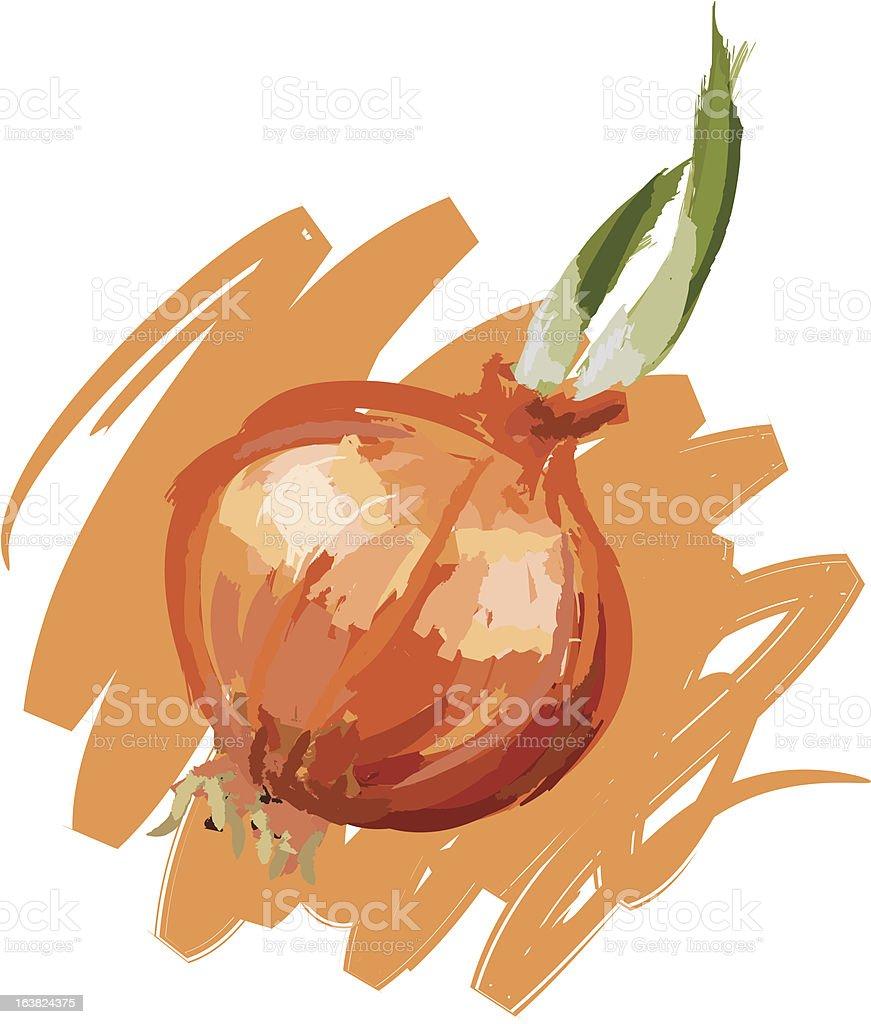 Onion royalty-free stock vector art