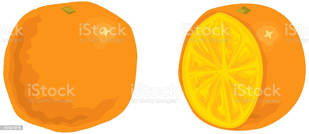 Orange - Vector vector art illustration