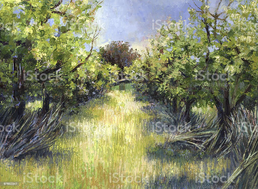 Orchard vector art illustration