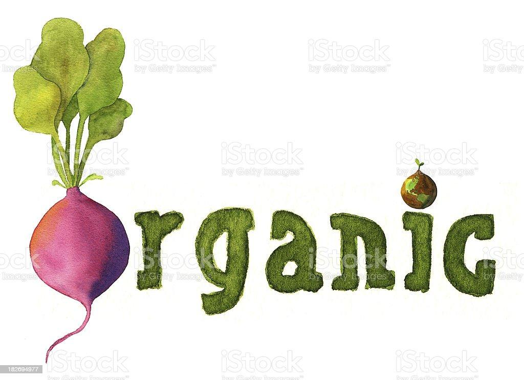 Organic with world and radish royalty-free stock vector art