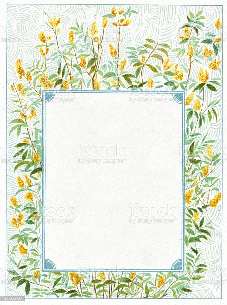 Ornate flower border picture frame royalty-free stock vector art
