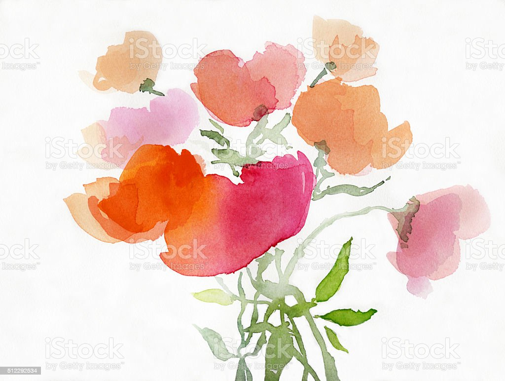 painted poppies on paper vector art illustration