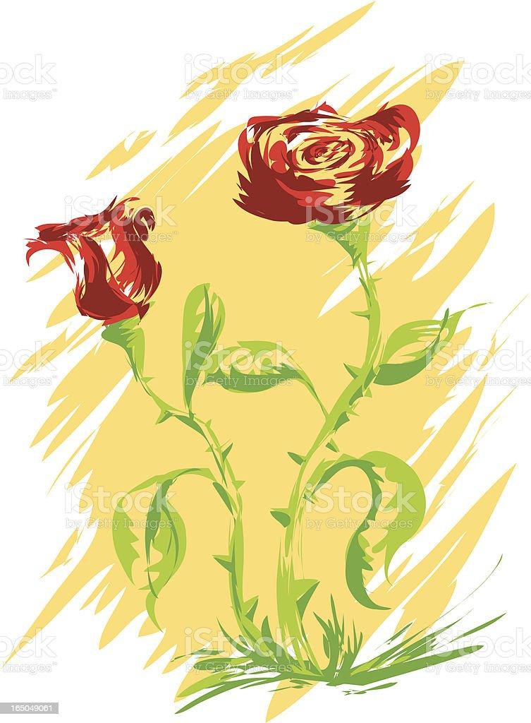 Painted Rose vector art illustration
