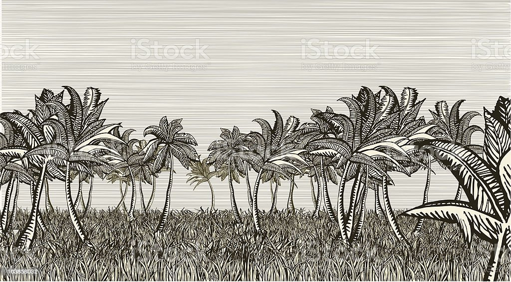 Palm landscape royalty-free stock vector art