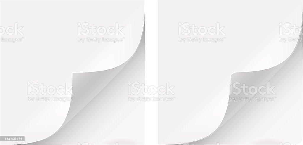 Paper Curl vector art illustration