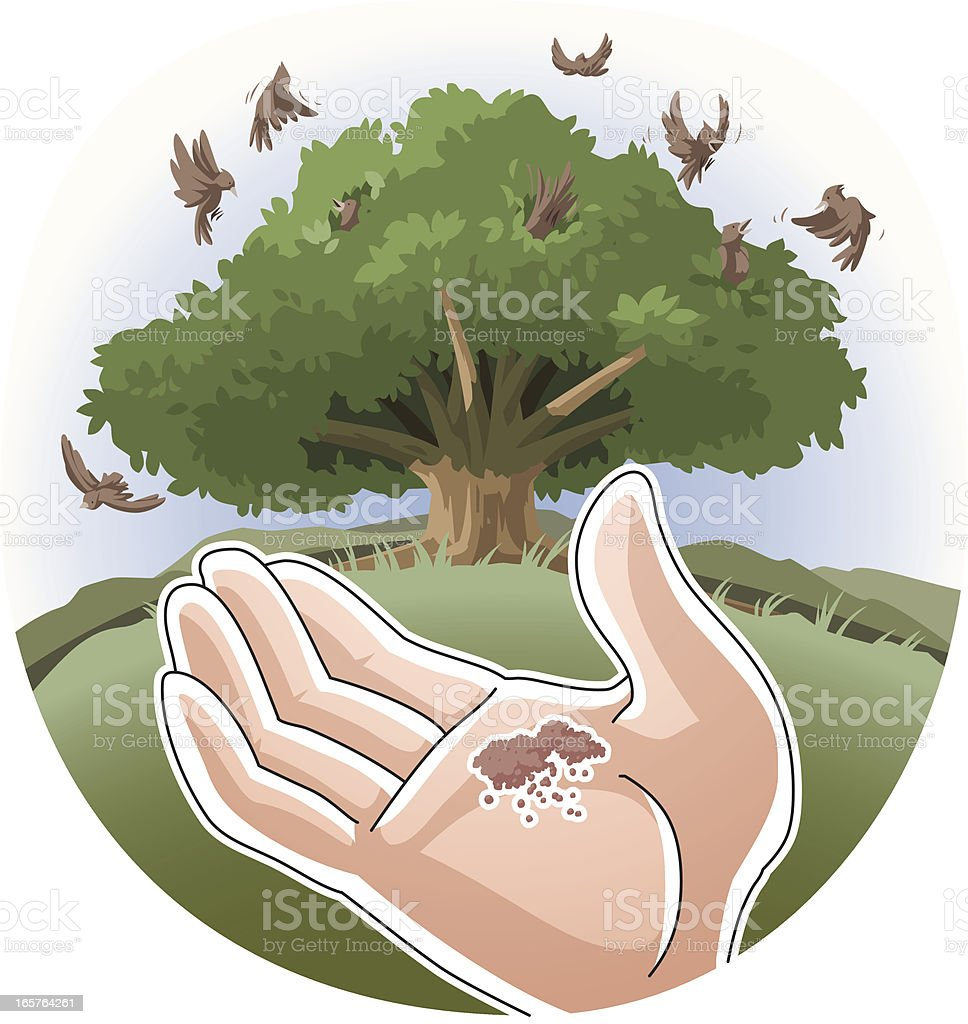 Parable of the Mustard Seed vector art illustration