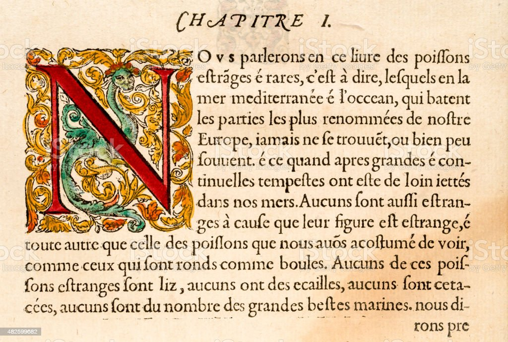 Paragraph with illuminated capital letter N, Antique 16th Century illustration vector art illustration