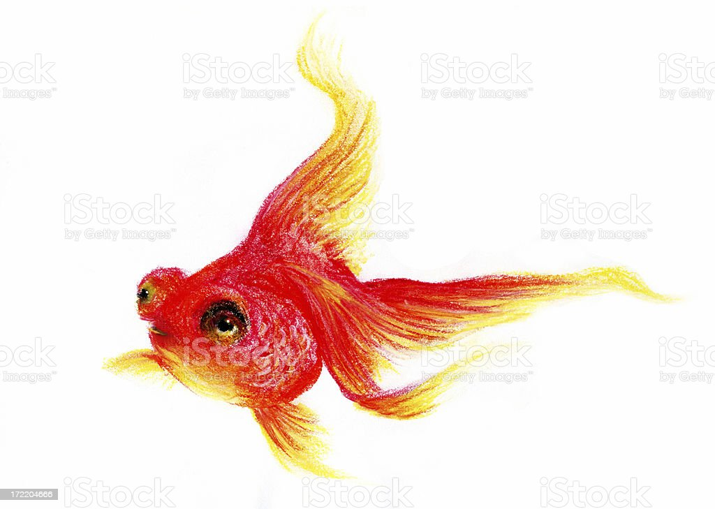 Pastel Illustrated GoldFish royalty-free stock vector art