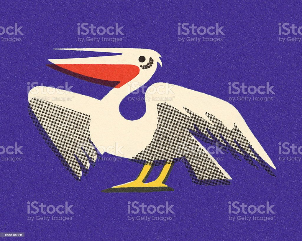 Pelican royalty-free stock vector art