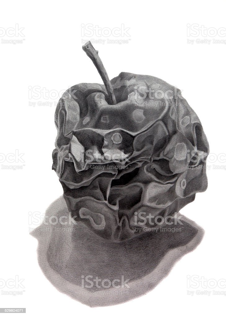 Pencil drawing of a rotten apple with shadow vector art illustration