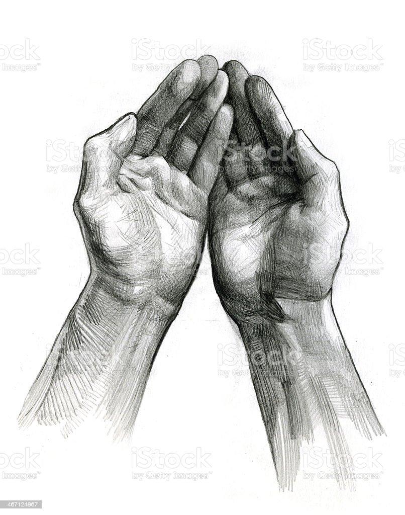 Pencil drawing of two hands facing upwards vector art illustration