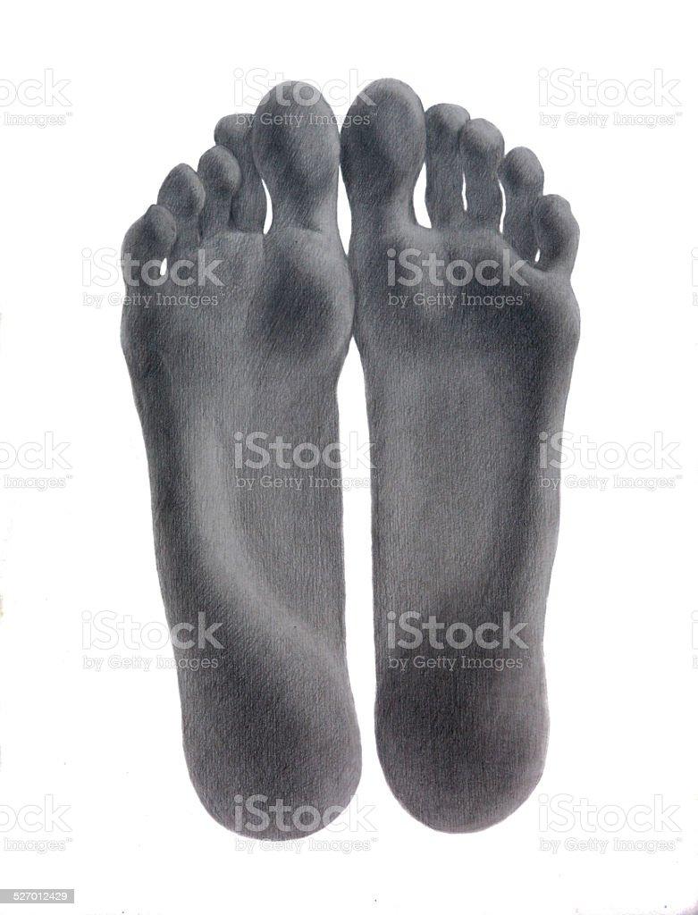 Pencil study of human feet soles vector art illustration