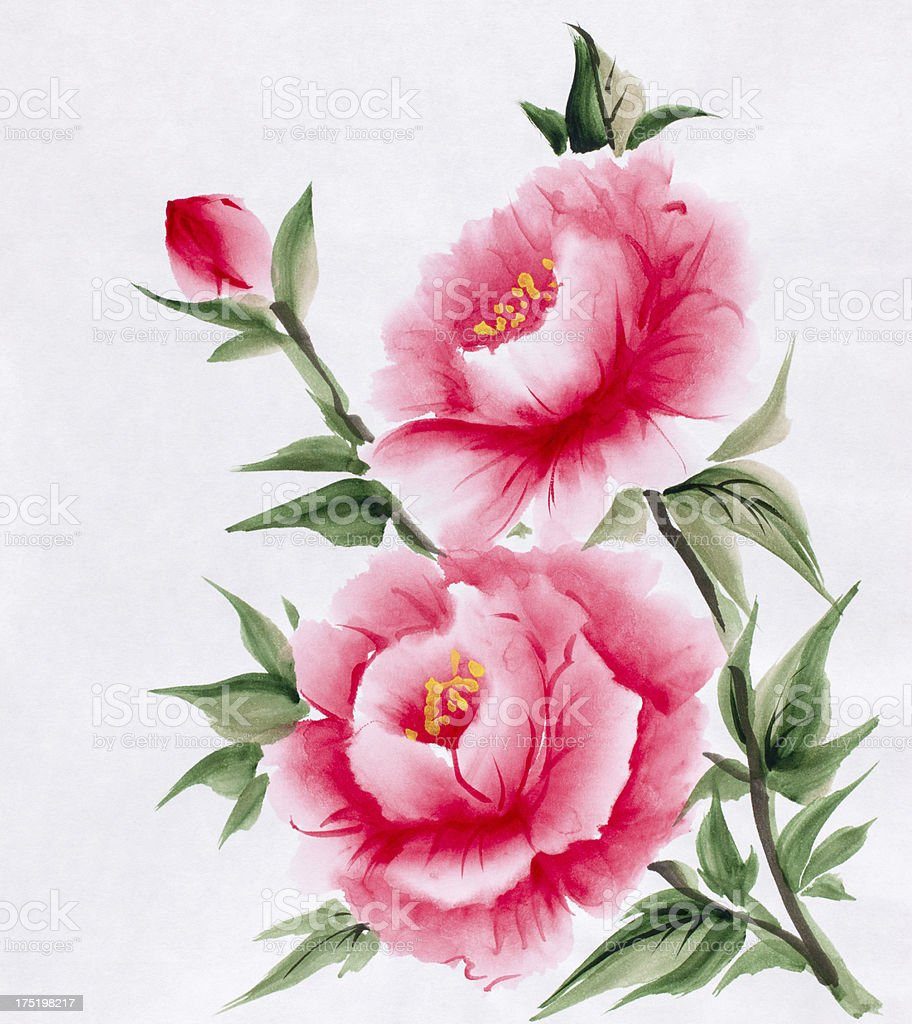 Peony royalty-free stock vector art