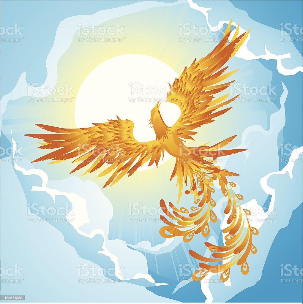 Phoenix on sky vector art illustration