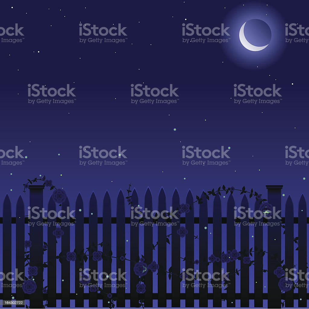 Picket and roses at night vector art illustration