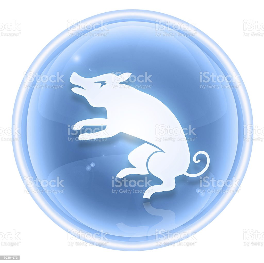 Pig Zodiac icon blue ice, isolated on white background. royalty-free stock vector art
