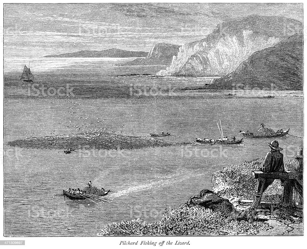 Pilchard fishing off The Lizard, Cornwall (Victorian engraving) vector art illustration