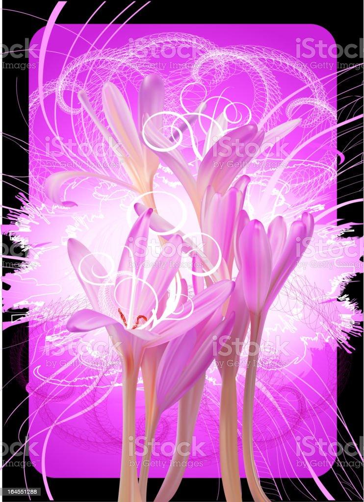 Pink concept flower background vector art illustration