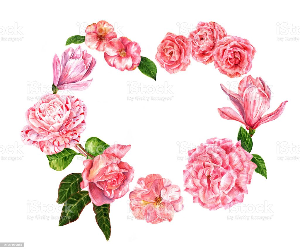 Pink watercolor flowers heart (roses, magnolias and camellias) vector art illustration