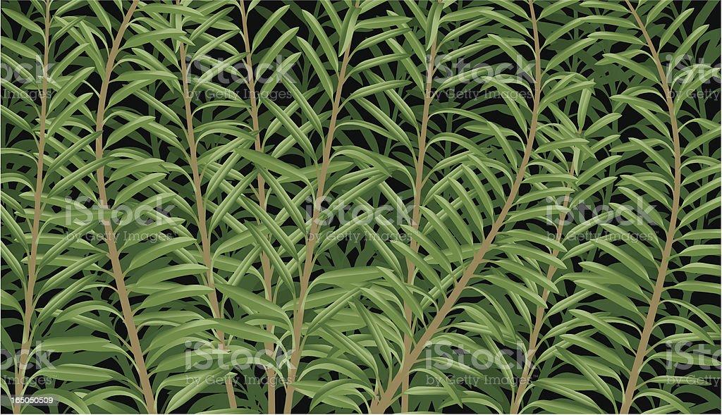Plant background vector art illustration