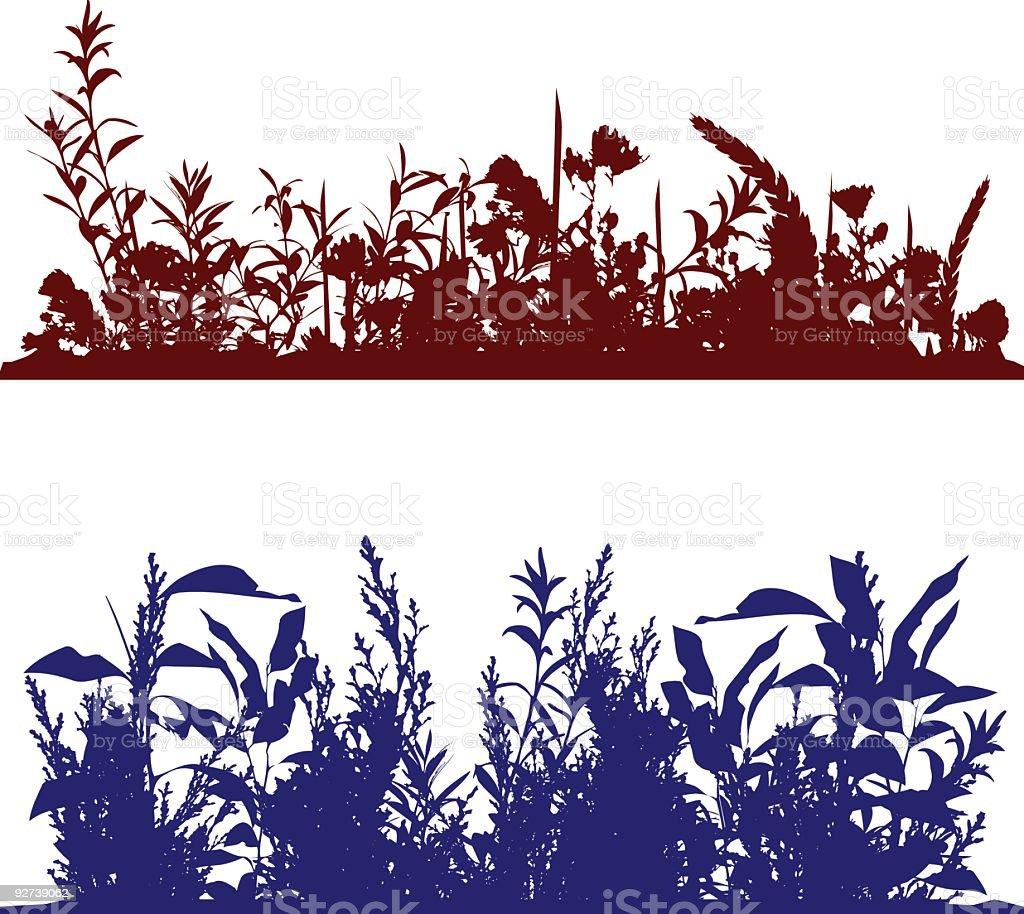 Plant Flower Leaf Border royalty-free stock vector art