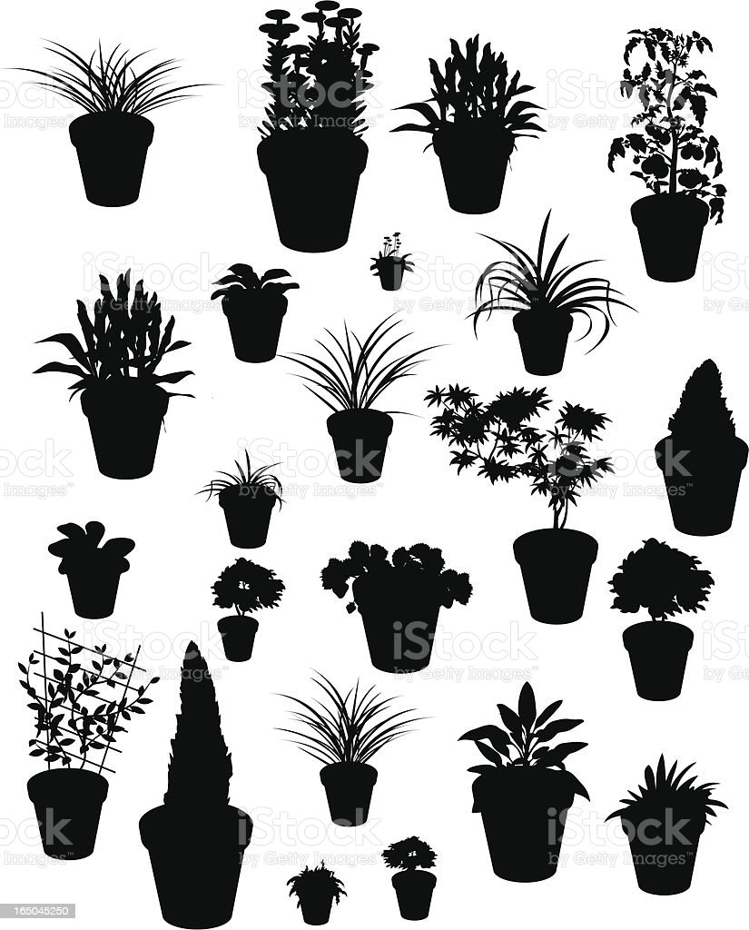 Plant silhouettes royalty-free stock vector art