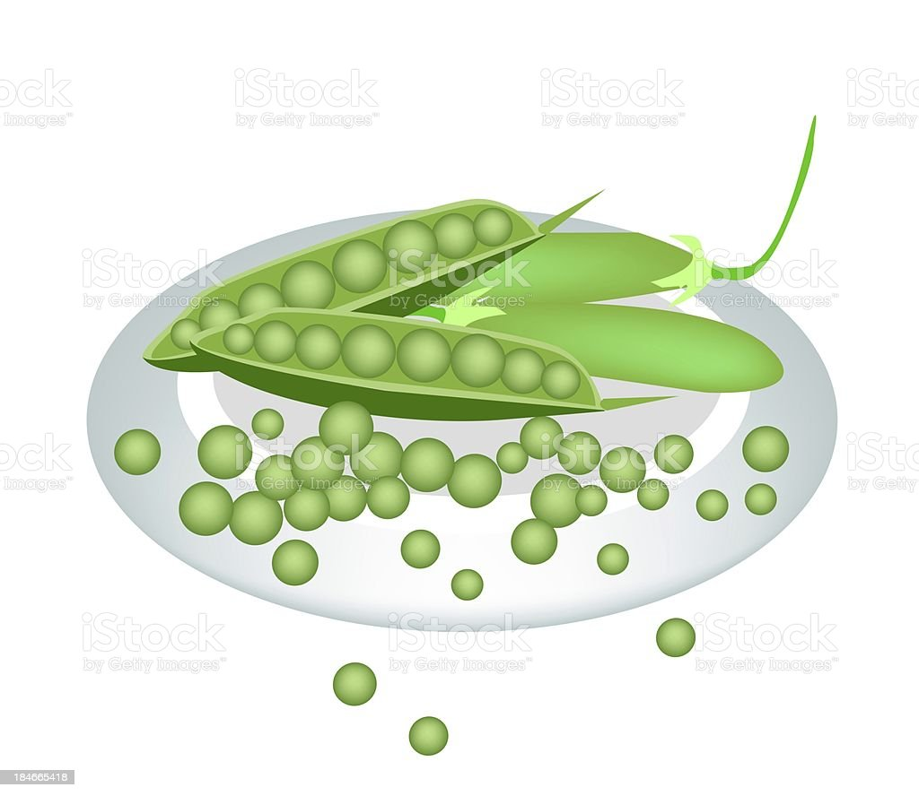 Plate of Delicious Sweet Green Pea vector art illustration