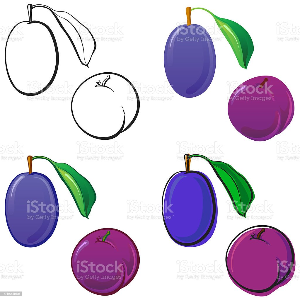 Plums royalty-free stock vector art