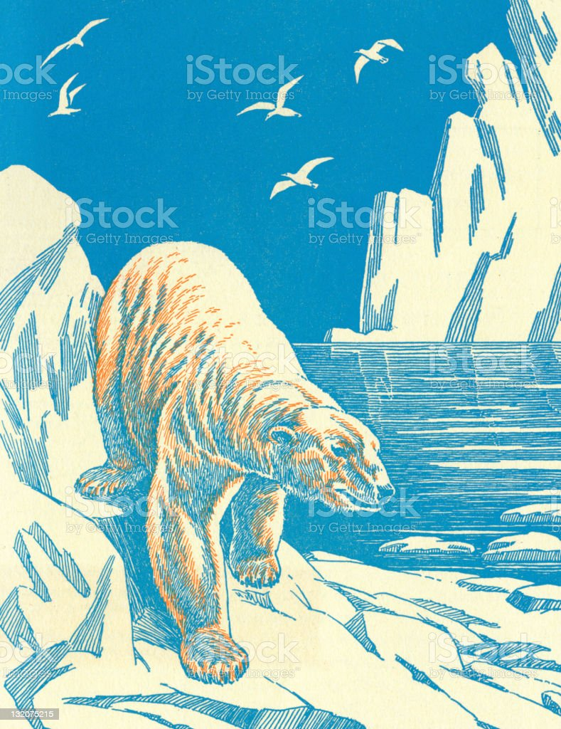 Polar Bear on Iceberg royalty-free stock vector art