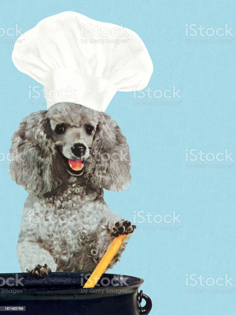 Poodle Wearing Chef's Hat and Stirring Pot royalty-free stock vector art