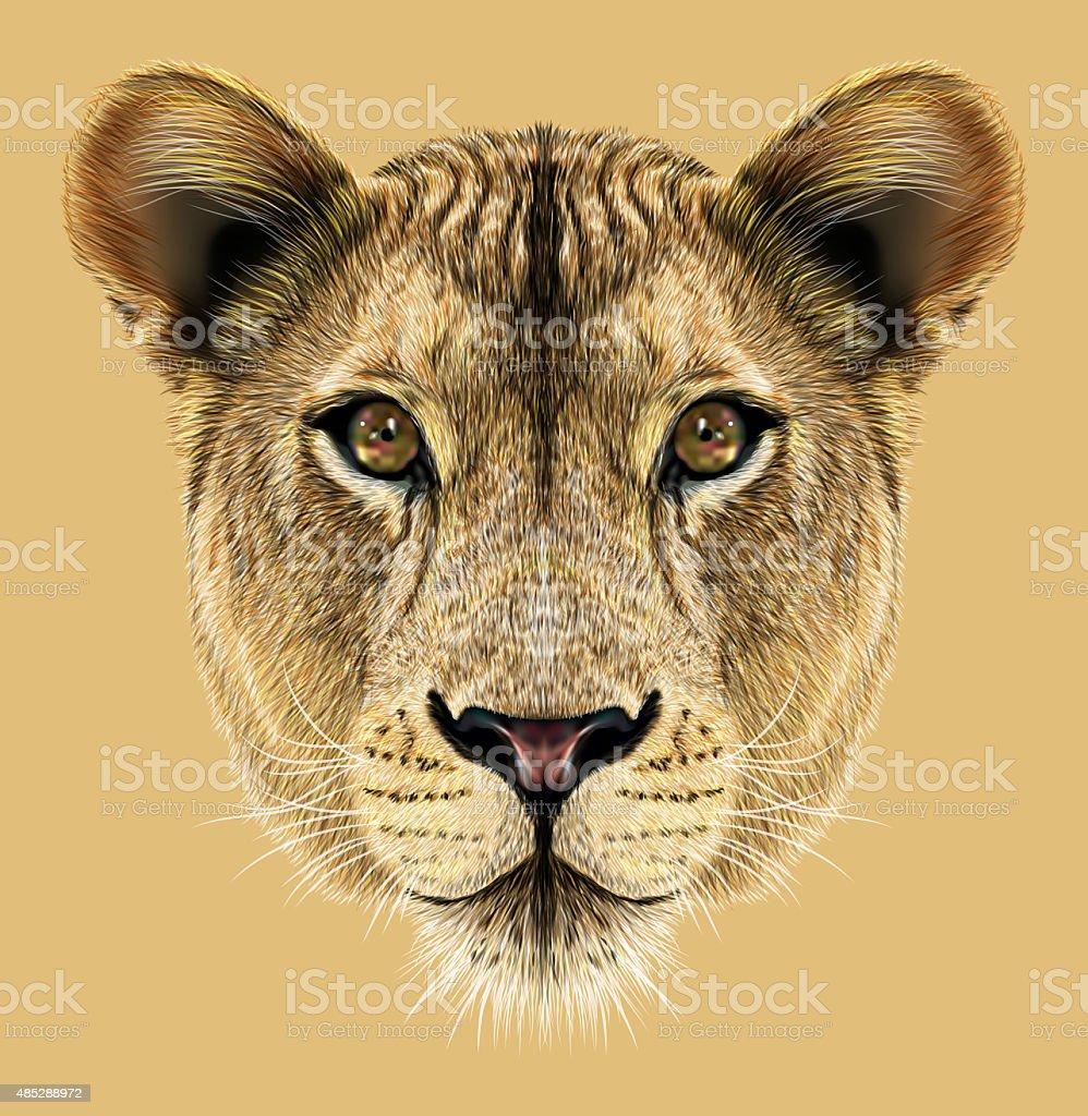 Portrait of Lioness vector art illustration
