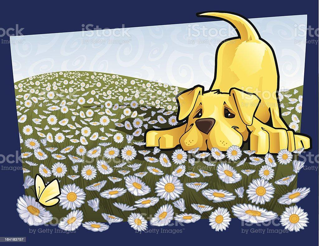 pounce vector art illustration