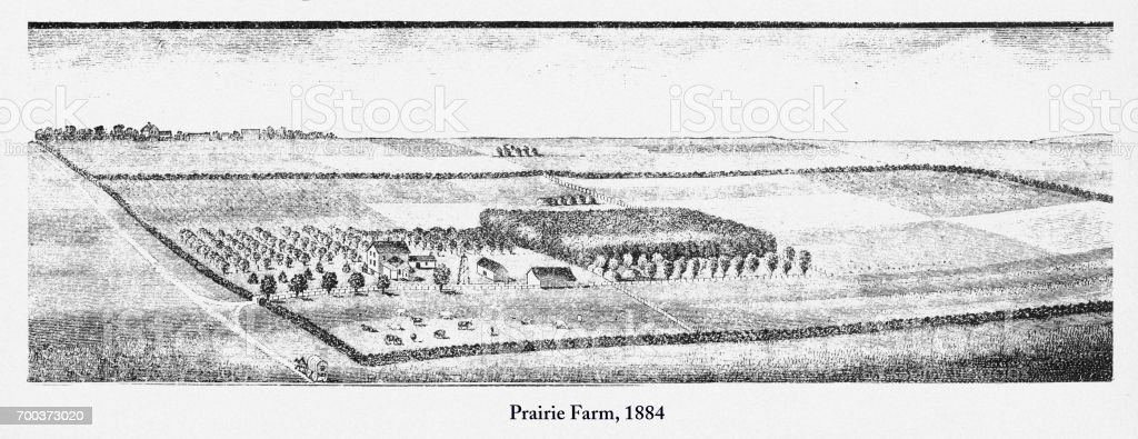 Prairie Farm, Early American Engraving, 1884 vector art illustration
