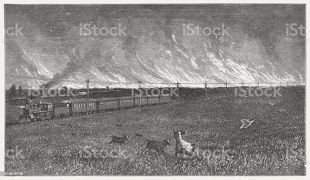 Prairie fire in the Wild West, wood engarving, published in 1880 vector art illustration