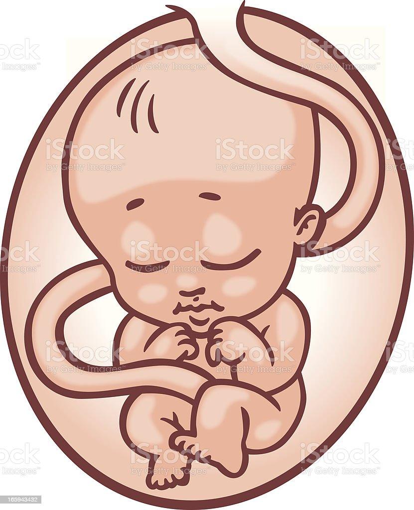 Pregnancy stock vector art 165943432 | iStock