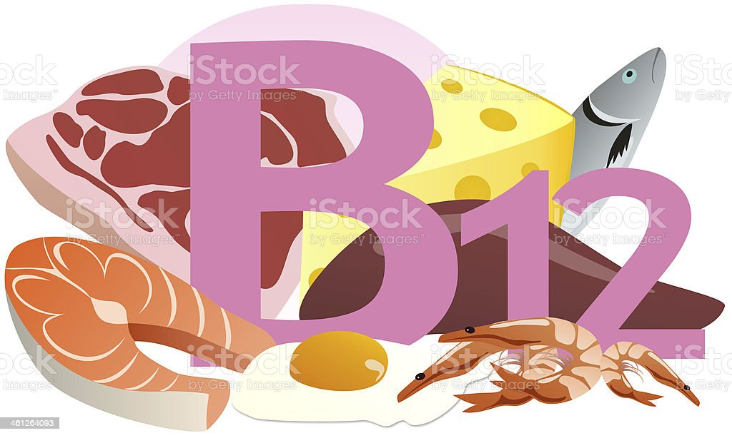 products containing vitamin B12 vector art illustration