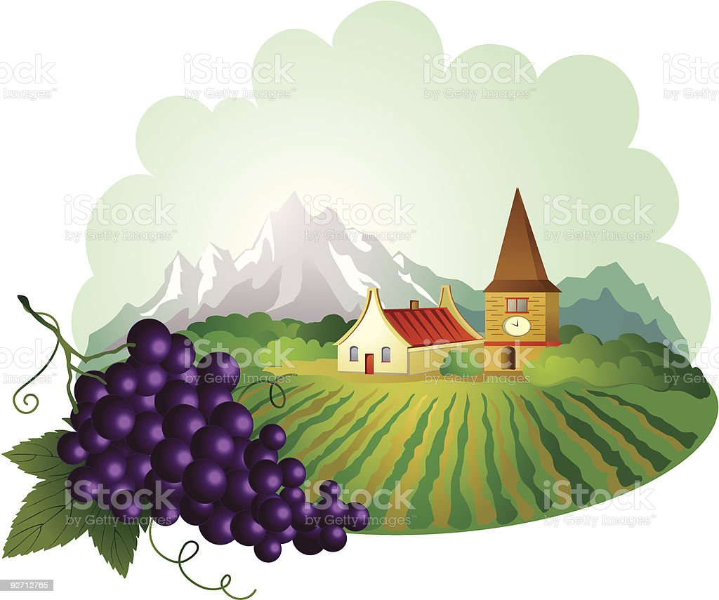 Provence background with grape royalty-free stock vector art