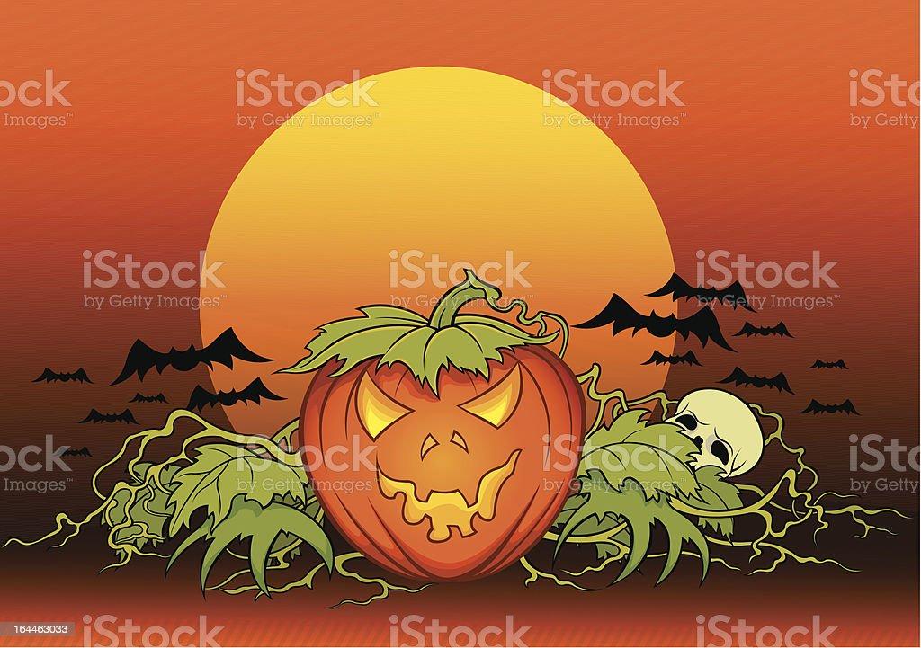 Pumpkin in the night vector art illustration