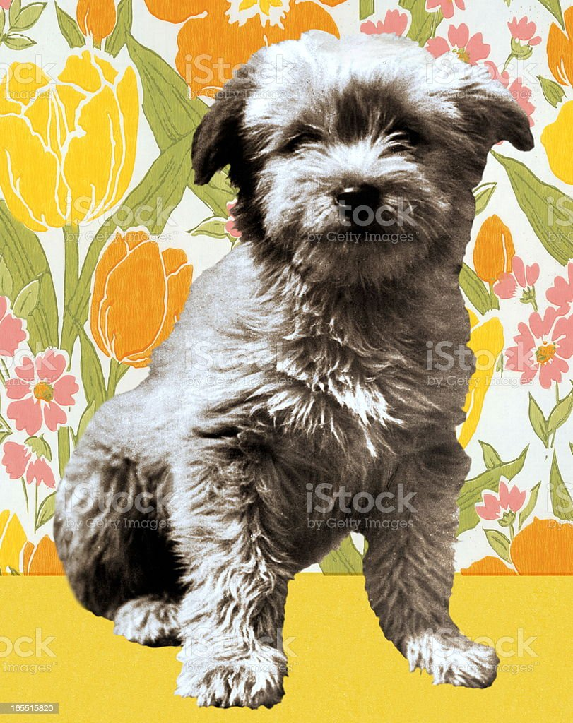 Puppy on Floral Background royalty-free stock vector art