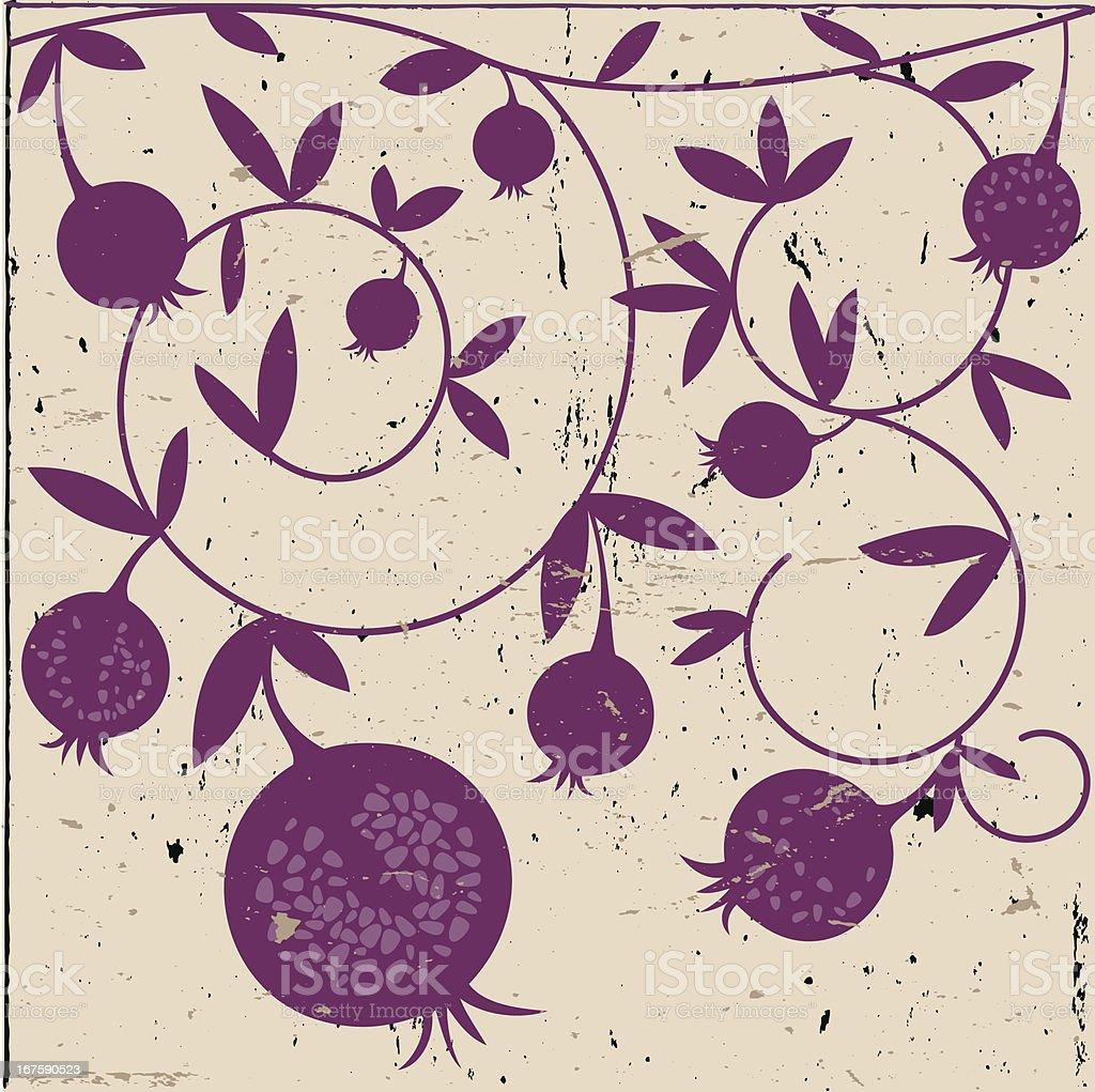 Purple Decorative Pomegranates On Grunge Background vector art illustration
