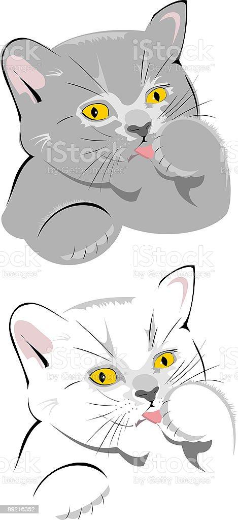pussycat vector art illustration