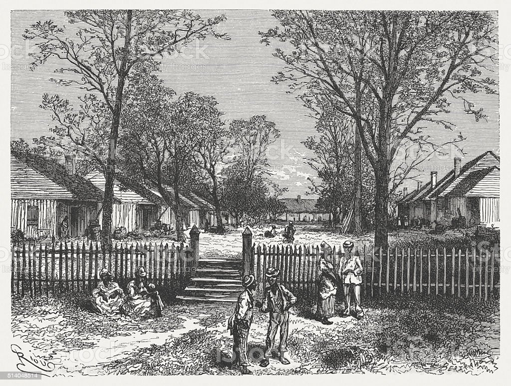Quarters of an american cotton plantation, wood engraving, published 1880 vector art illustration