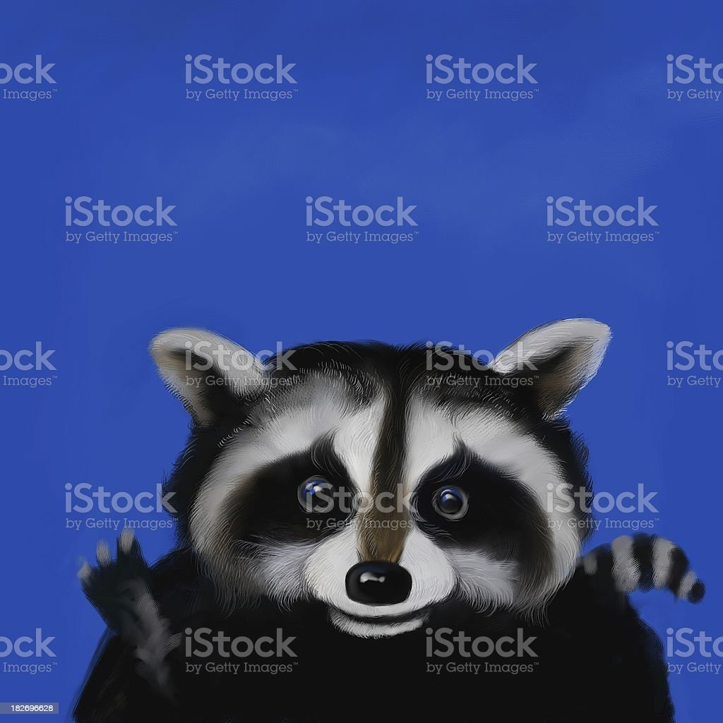 Raccoon royalty-free stock vector art