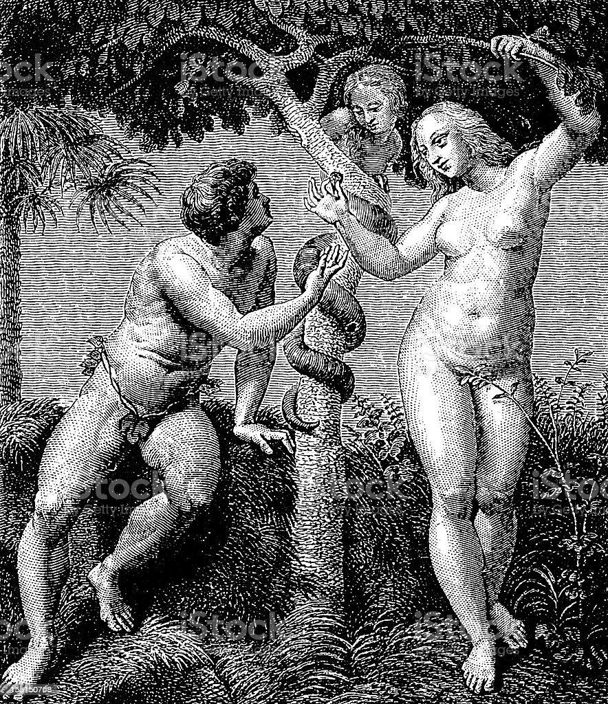 Raffaello's Original Sin royalty-free stock vector art