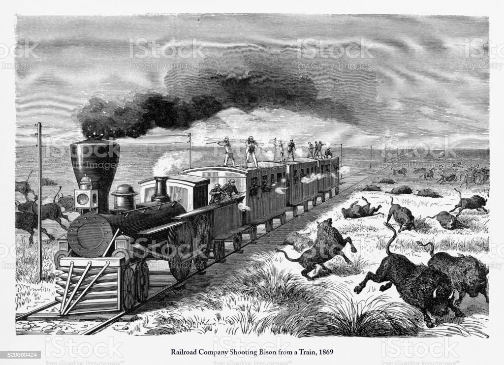 Railroad Company Shooting Bison from a Train Engraving, 1869 vector art illustration