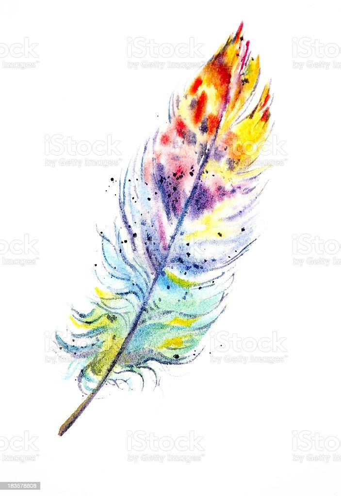 Rainbow Feather vector art illustration