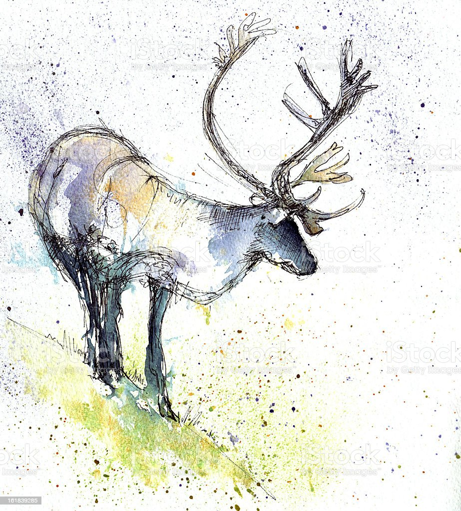 Raindeer royalty-free stock vector art