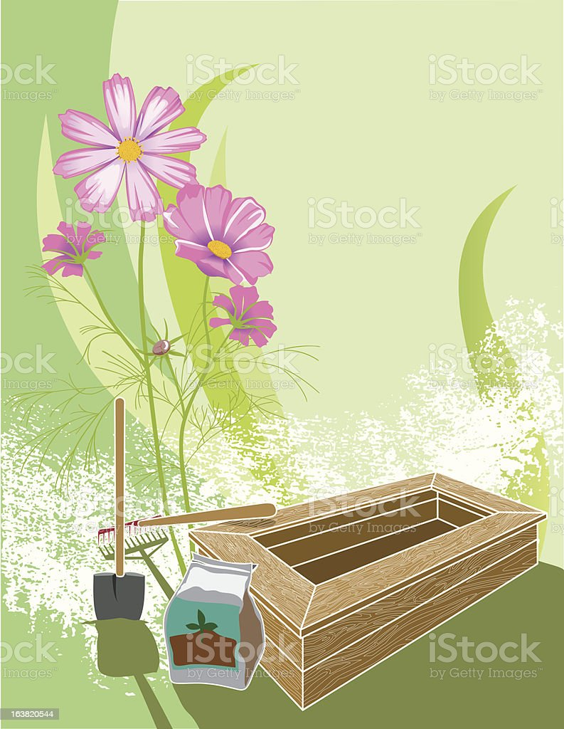 Raised bed gardening with Cosmos royalty-free stock vector art