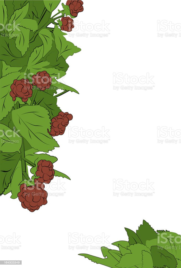 Raspberry Page Design Border royalty-free stock vector art