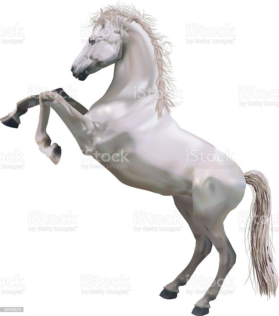 Rearing Horse royalty-free stock vector art